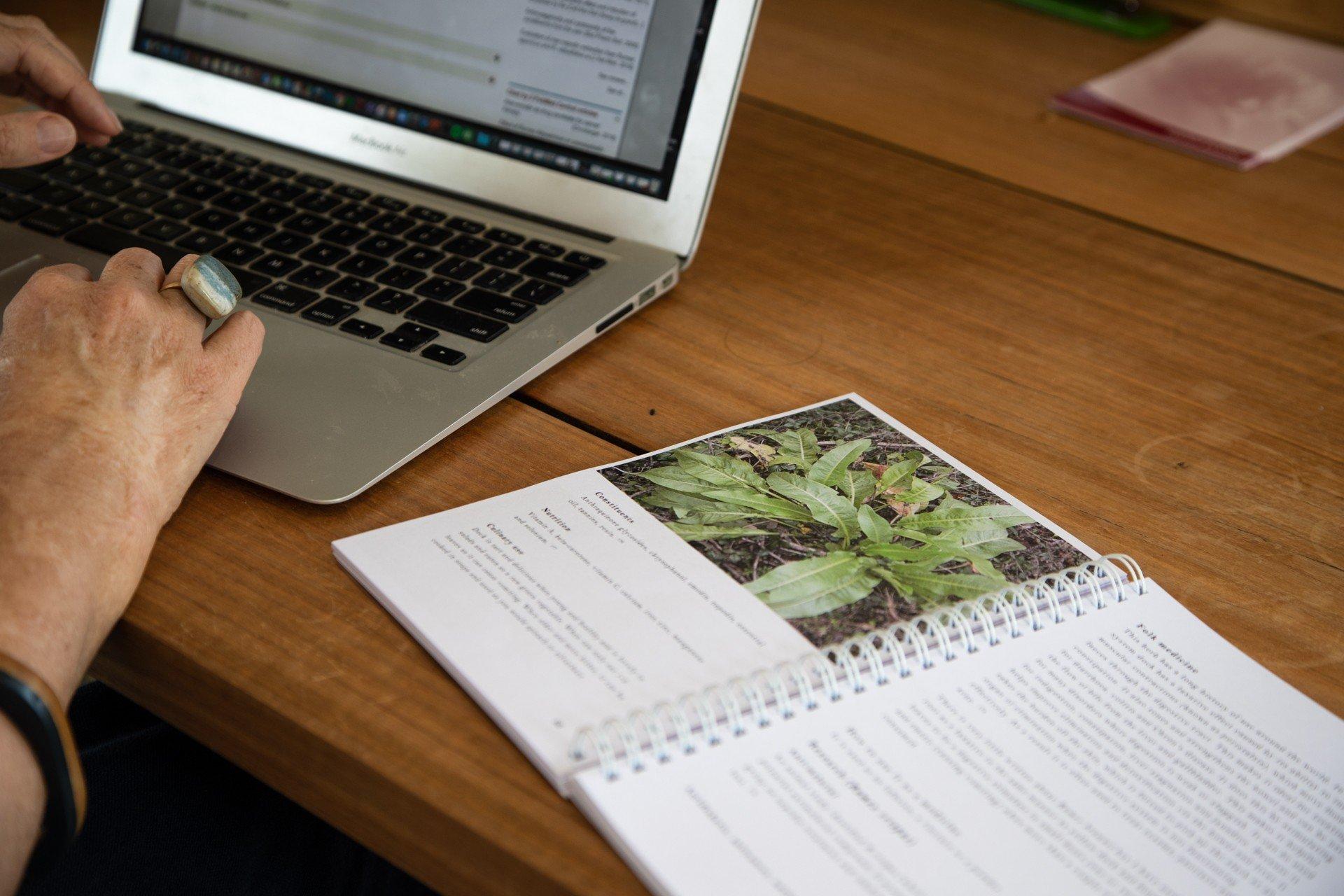 Wild Food Foraging and Harvesting Heidi Merika