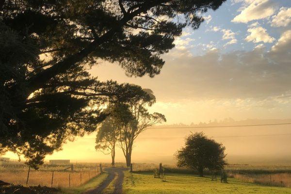 Paradise-Road-Farm-road